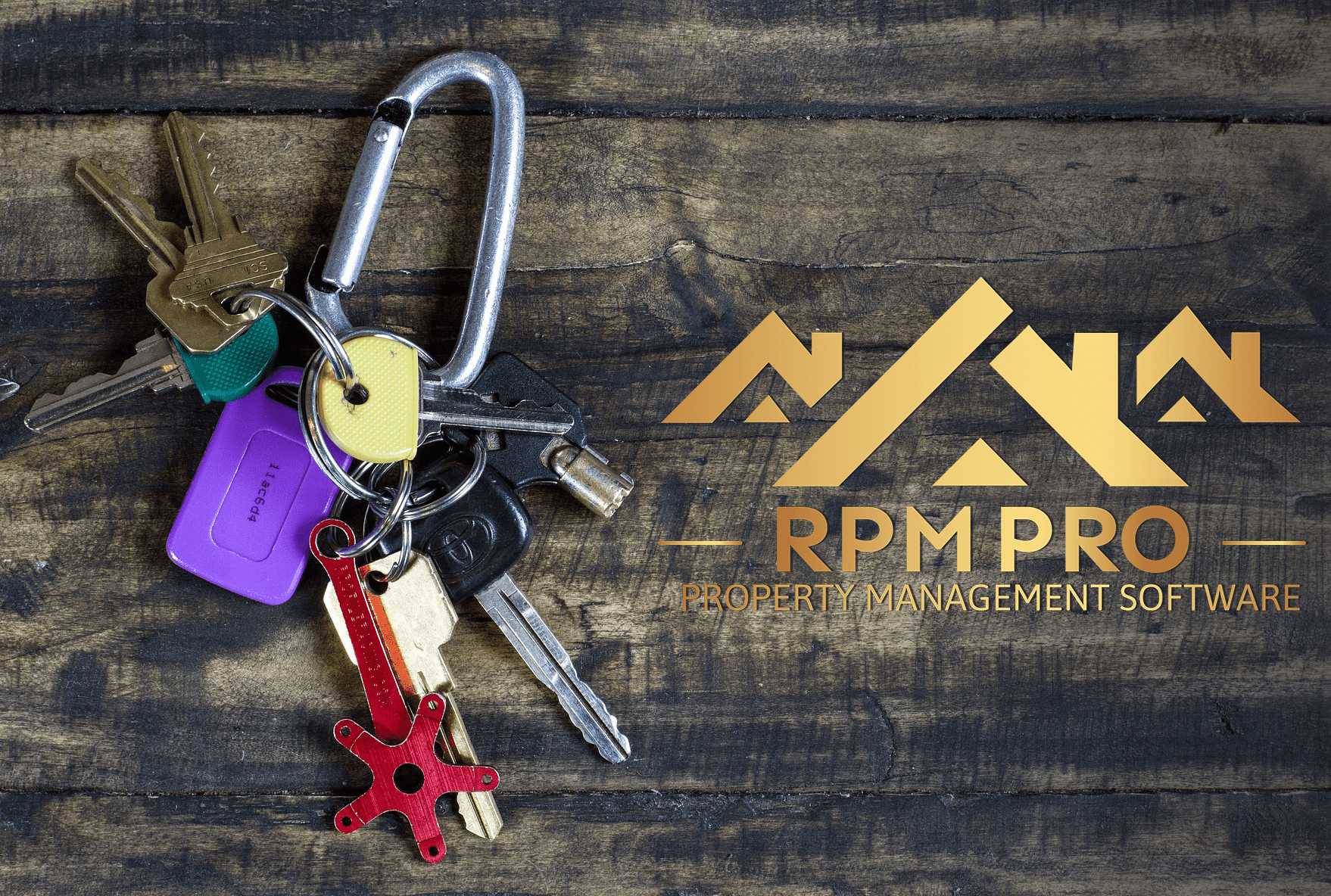 New Release: RPM Pro V3.8 Image